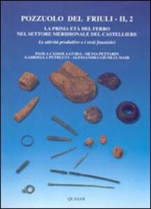 Pozzuolo del Friuli. Vol. 2\2: La prima età del ferro nel settore meridionale del castelliere. Le attività produttive e i resti faunistici.