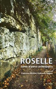 Roselle. Guida al parco archeologico