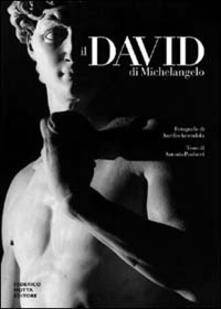 Il David di Michelangelo.pdf