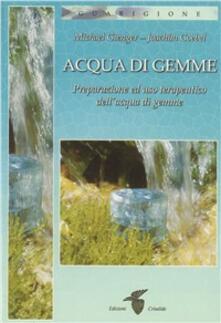 Ipabsantonioabatetrino.it Acqua di gemme. Preparazione ad uso terapeutico dell'acqua di gemme Image