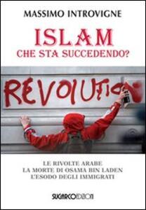 Islam. Che sta succedendo? Le rivolte arabe. La morte di Osama Bin Laden. L'esodo degli immigrati