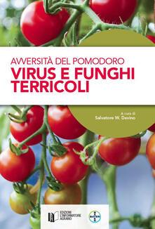 Radiosenisenews.it Avversità del pomodoro. Virus e funghi terricoli Image