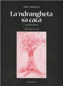 La 'Ndrangheta s'a caca (se la fa sotto)