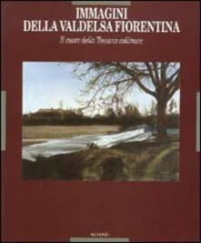 Immagini della Valdelsa fiorentina. Il cuore della Toscana collinare. Ediz. illustrata - copertina