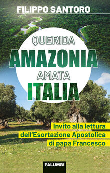 Daddyswing.es Querida Amazonia amata Italia. Invito alla lettura dell'Esortazione Apostolica di papa Francesco Image