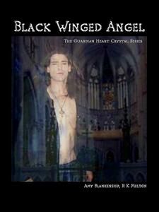 Black winged angel. The guardian heart crystal. Vol. 7