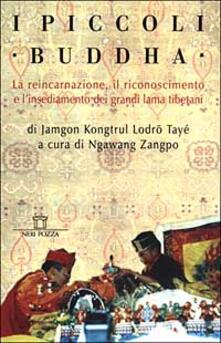 Antondemarirreguera.es I piccoli Buddha. Il riconoscimento dei maestri reincarnati del Tibet e dell'Himalaya Image