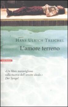 L' amore terreno - H. Ulrich Treichel - copertina