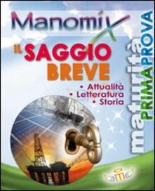 Squillogame.it Manomix. Il saggio breve Image