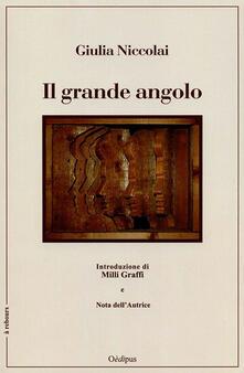 Vastese1902.it Il grande angolo Image
