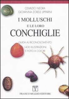 Amatigota.it I molluschi e le loro conchiglie. Guida al riconoscimento Image