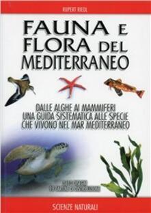 Squillogame.it Fauna e flora del Mediterraneo Image