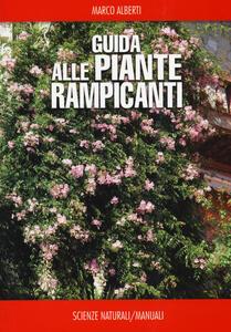 Guida alle piante rampicanti