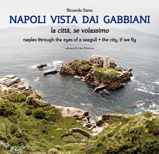 Napoli vista dai gabbiani. La città se volassimo