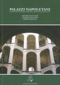 Palazzi napoletani. Itinerari grafici e percorsi interpretativi nel rilievo dell'architettura
