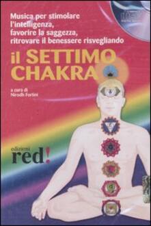 Amatigota.it Il settimo chakra. Audiolibro. CD Audio Image