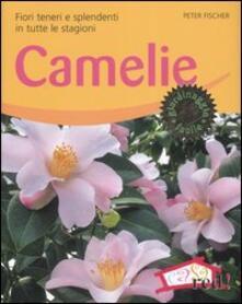 Winniearcher.com Camelie. Fiori teneri e splendenti in tutte le stagioni Image