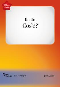 Cos'è - Un Ko - ebook
