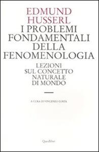 I problemi fondamentali della fenomenologia. Lezioni sul concetto naturale di mondo