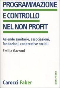 Programmazione e controllo nel non profit. Aziende sanitarie, associazioni, fondazioni, cooperative sociali