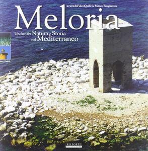 Meloria. Un faro fra natura e storia nel Mediterraneo