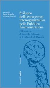 Sviluppo della conoscenza interorganizzativa nella pubblica amministrazione. Rilevazione dei carichi di lavoro nel tribunale di Potenza