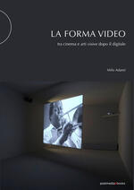 La forma video. Tra cinema e arti visive dopo il digitale