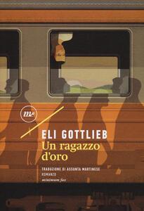 Un ragazzo d'oro - Eli Gottlieb - copertina