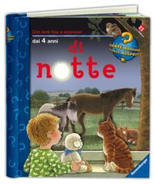 Premioquesti.it Di notte Image