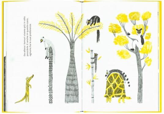 Sulla vita dei lemuri - Andrea Antinori - 2