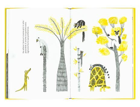 Sulla vita dei lemuri - Andrea Antinori - 4