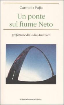 Un ponte sul fiume Neto.pdf