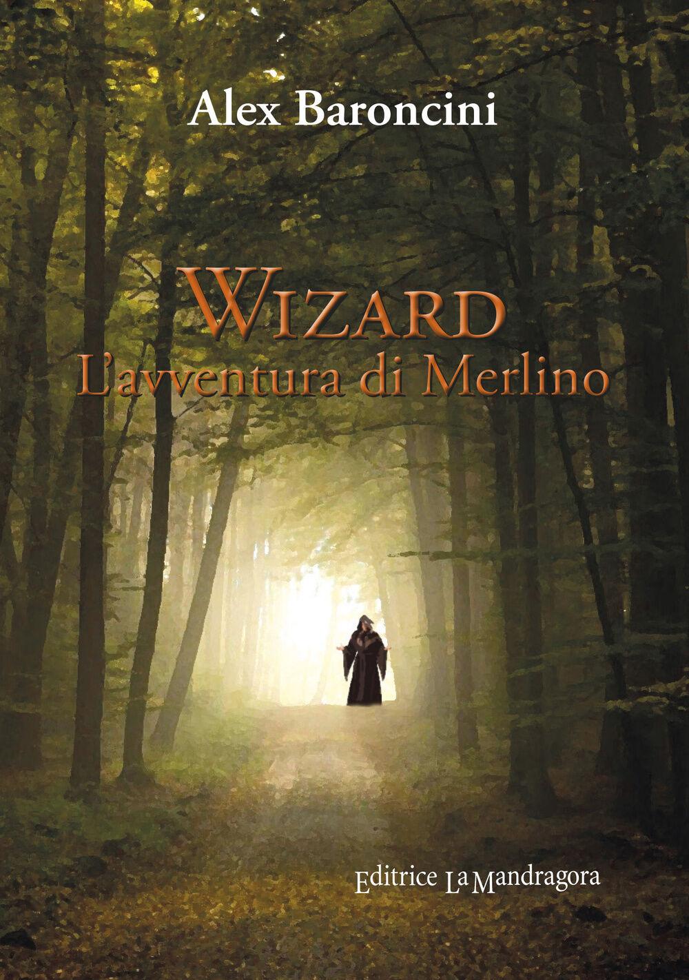 Wizard l'avventura di Merlino