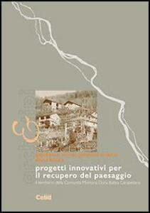 Progetti innovativi per il recupero del paesaggio. Il territorio della comunità montana Dora Baltea Canavesana