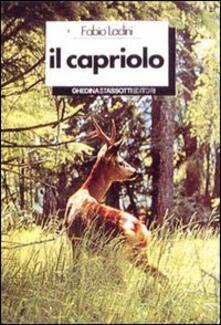 Radiospeed.it Il capriolo Image