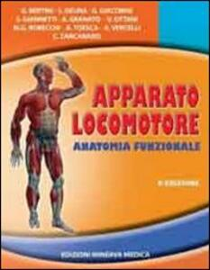 Apparato locomotore. Anatomia funzionale