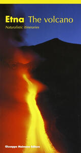 Etna. The volano. Naturalistic itineraries