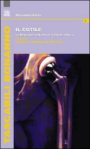 Il cotile. La revisione nella protesi totale d'anca