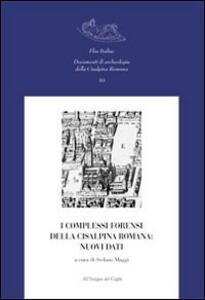 I complessi forensi della Cisalpina romana. Nuovi dati. Atti del Convegno di studi (Pavia, 12-13 marzo 2009)