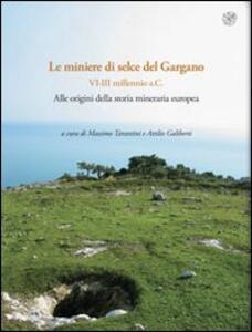 Rassegna di archeologia (2009-2011). Vol. 24\1: Preistorica e protostorica. Le miniere di selce del Gargano (VI-III millennio a.C.). Alle origini della storia mineraria europea.