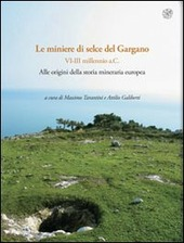 Rassegna di archeologia vol. 24A