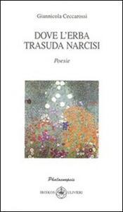 Dove l'erba trasuda narcisi - Giannicola Ceccarossi - copertina