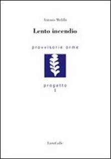 Lento incendio - Antonio Melillo - copertina