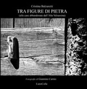 Tra figure di pietra (alle case abbandonate dell'alta Valsassina)