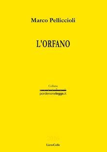L' orfano - Marco Pelliccioli - copertina