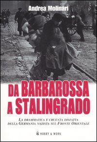 Da Barbarossa a Stalingrado. La drammatica e cruente disfatta della Germania nazista sul fronte orientale