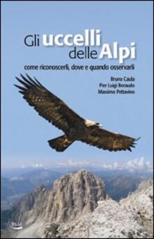 Gli uccelli delle Alpi. Come riconoscerli, dove e quando osservarli - Bruno Caula,P. Luigi Beraudo,Massimo Pettavino - copertina
