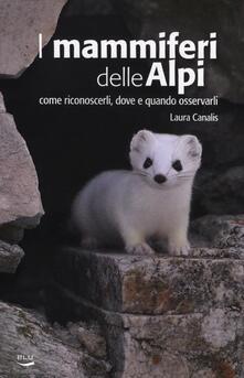 Radiosenisenews.it I mammiferi delle Alpi. Come riconoscerli, dove e quado osservarli Image