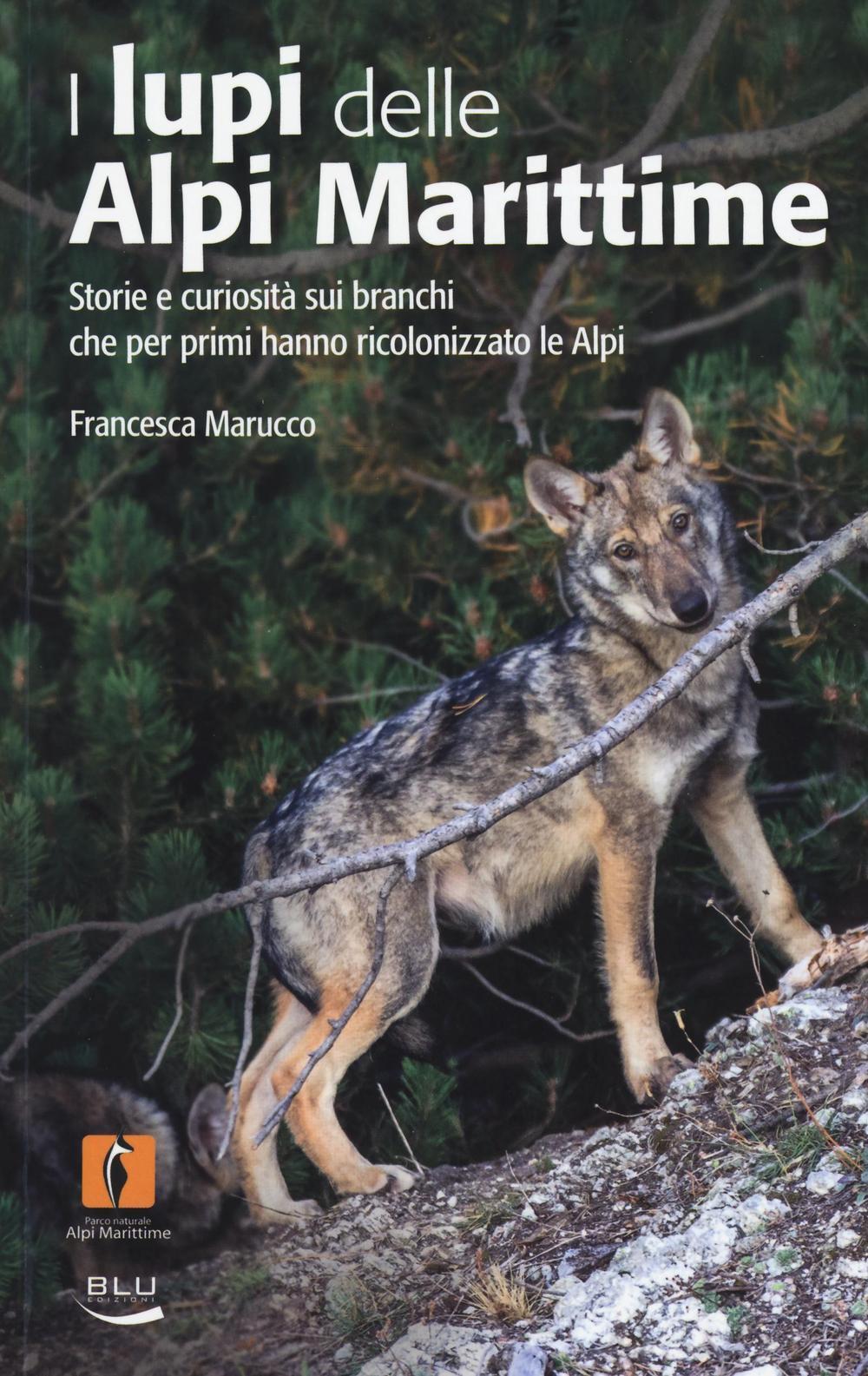 Exceptionnel Blu Edizioni: Libri dell'editore in vendita online FF41