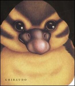 L' anatroccolo - Lorella Rizzatti - copertina